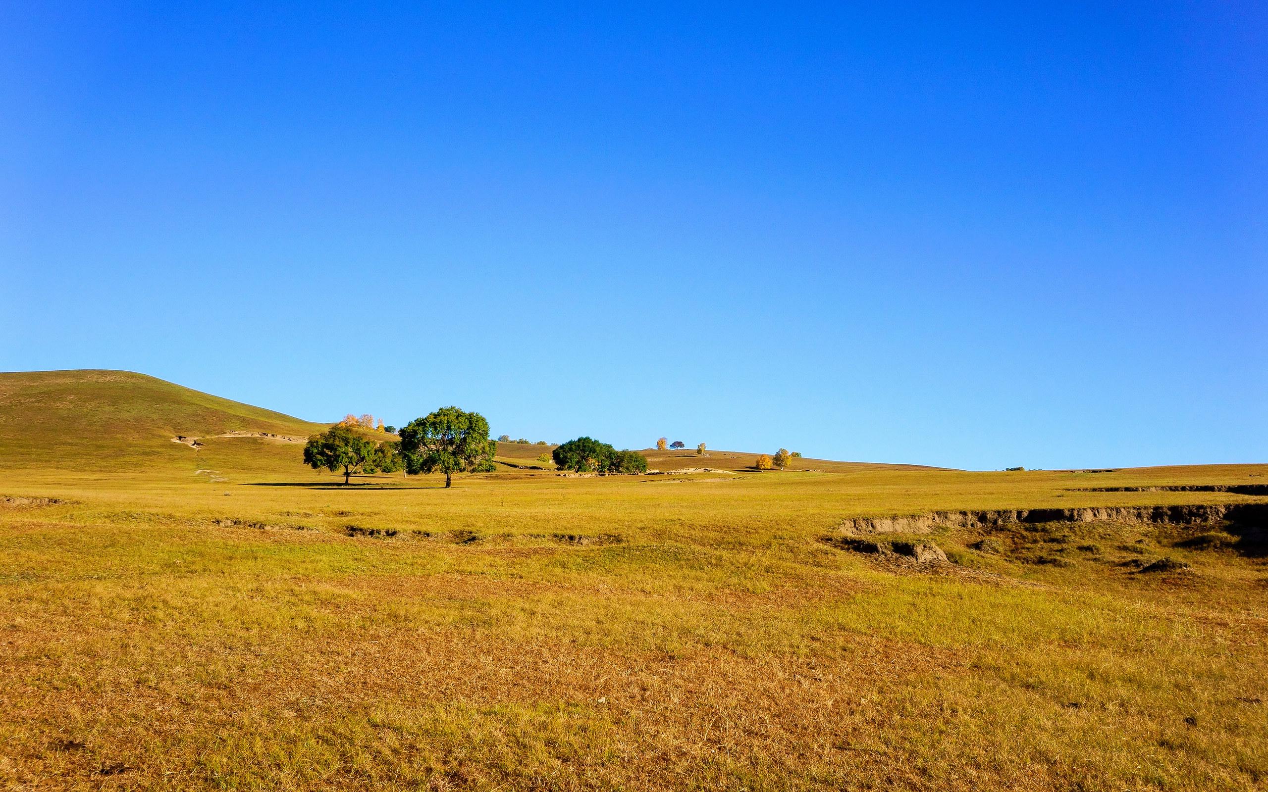 乌兰布统草原风景图片桌面壁纸